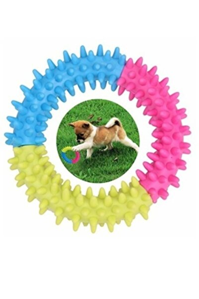 TİNEKE Köpek Diş Temizleyici Kaşıyıcı Oyuncağı Isırma Çiğneme Çemberi