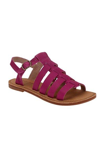 Timberland Kadın Mor Sandalet 8416B