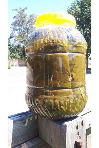 Ala Salamura Alaşehir Yarım Saplı Salamura Yaprak 5 kg