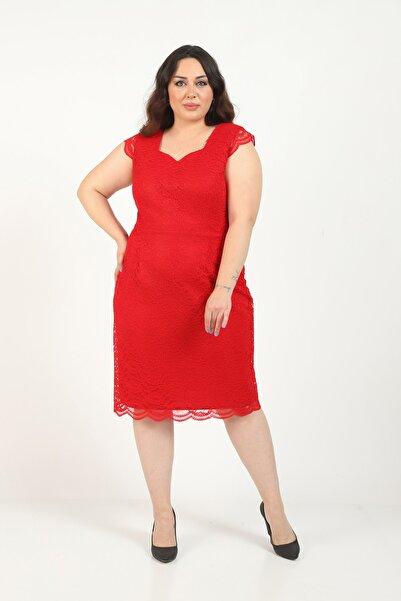 Butik Miza Kırmızı Dantel Büyük Beden Elbise