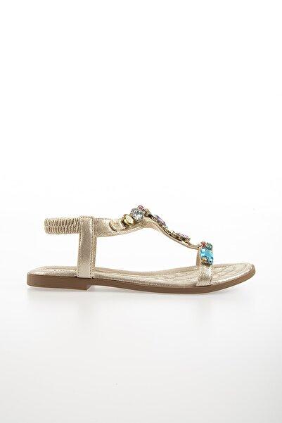 Pierre Cardin Kadın Günlük Sandalet-altın Pc-6527