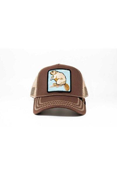 Goorin Bros Unisex Kahverengi Beaver Standart Şapka