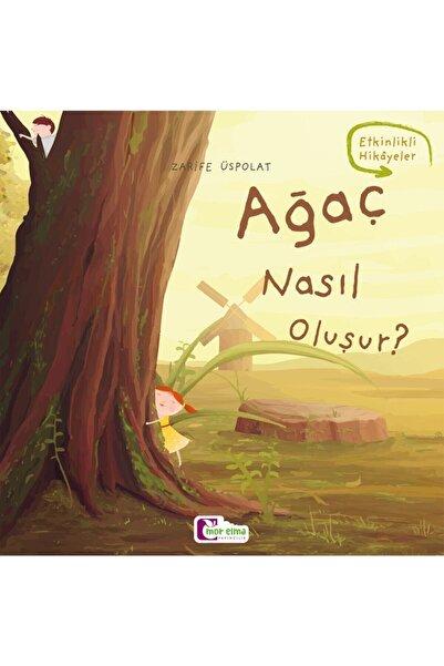 Mor Elma Yayıncılık Ağaç Nasıl Oluşur - Oluşum Hikâyeleri - Okul Öncesi Kitabı
