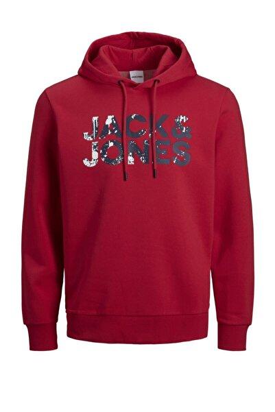Jack & Jones Jjsplash Kapüşonlu Sweatshirt 12177936