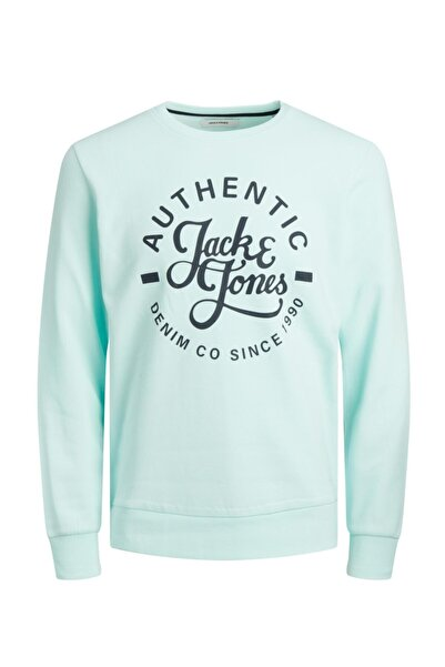 Jack & Jones Erkek Jack Jones Hero  Sweat