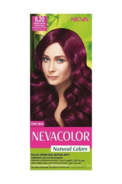Neva Color Nevacolor Natural Colors 6.20 Orkide Moru - Kalıcı Krem Saç Boyası Seti