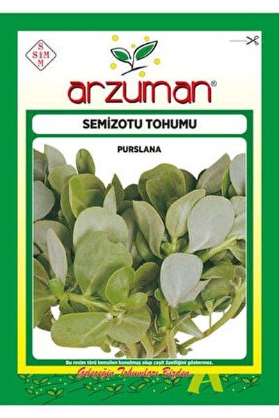 Yeşim Semizotu Tohumu 10 Gram