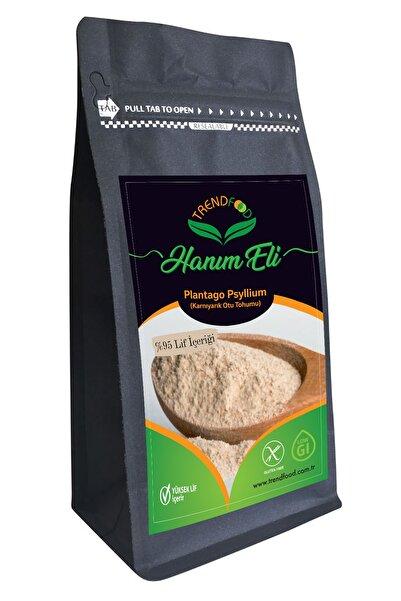 TREND FOOD Psyllium Karnı Yarık Otu Tohumu Tozu Prebiyotik Etki Glutensiz  Güvenli Gıda Bitkisel 100 gr