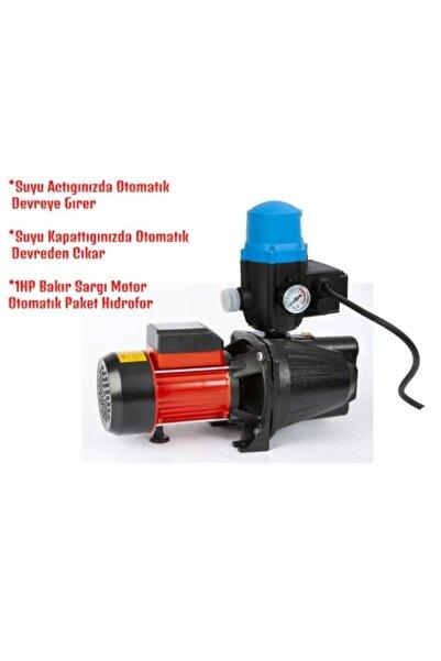 İtaly Style Italy Bakır Sargı Paket Hidrofor Otomatik Sistem Su Pompası 1hp 0.75 Kw Otomatik Pompa