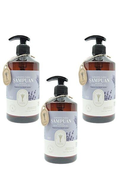 Gallipoli Lavender Doğal Bitkisel Lavanta Yağlı Şampuan 500 ml 3 Adet