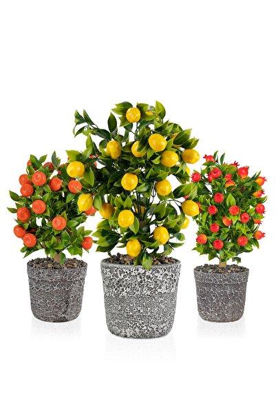 Çiçekmisin Porselen Saksıda Yapay Ağaçlar 3'lü Set Limon Mandalina Nar