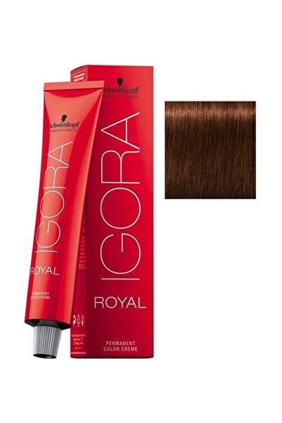 Igora Royal 5-7 Açık Kahve-Bakır