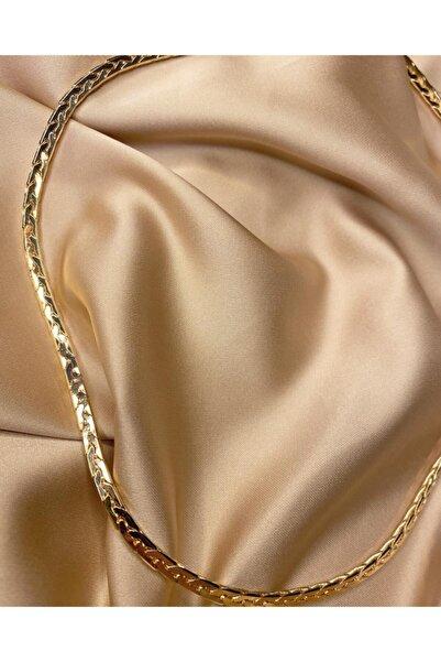 LEO Kadın Gold İtalyan Zincir Kolye