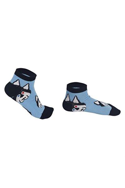 Özgür Çoraplar Husky Patik Kadın Çorap