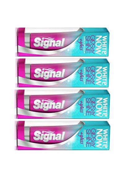 Signal White Now Glossy Shine Diş Macunu 75 ml x 4 adet