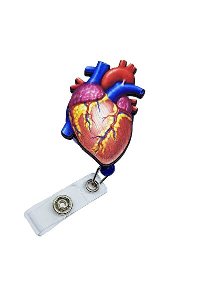 Latissime Anatomik Kalp Yoyo Kartlık