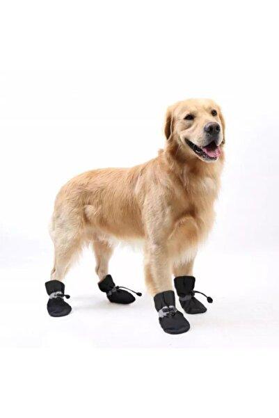 Pet İmage Maker Köpek Ayakkabısı (su Geçirmez)
