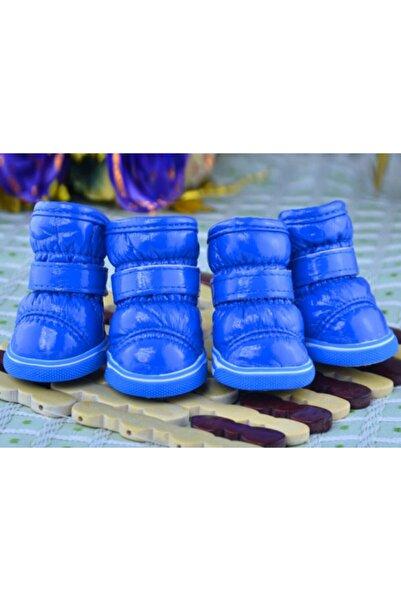 Petrika Köpek Su Geçirmez Ayakkabı