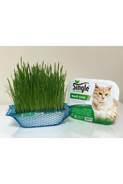Bio PetActive Single Natural Kedi Çimi