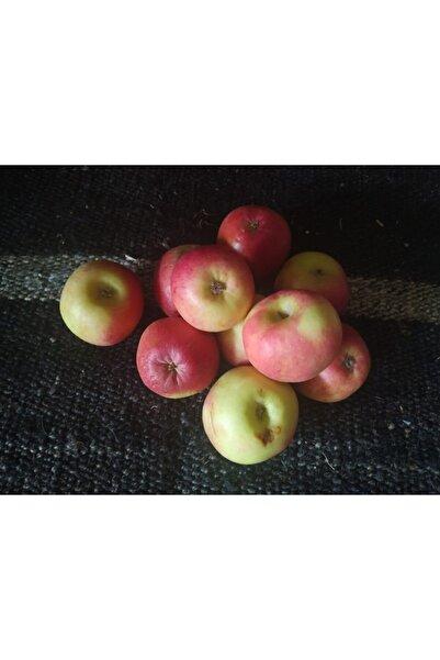 AMASSEİA Amasya Elması Atalık Ağaçlardan 3000gr