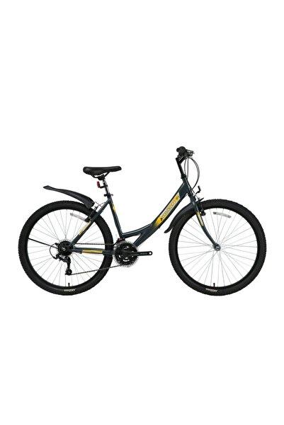 Bisan Mts 4100 Sentiero 24 Jant Dağ Bisikleti - Gri/sarı