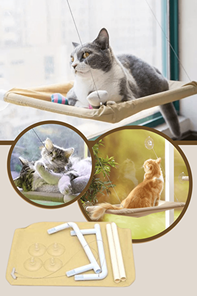 Arsimo Sunny Seat Cama Yapışan Kedi Yatağı