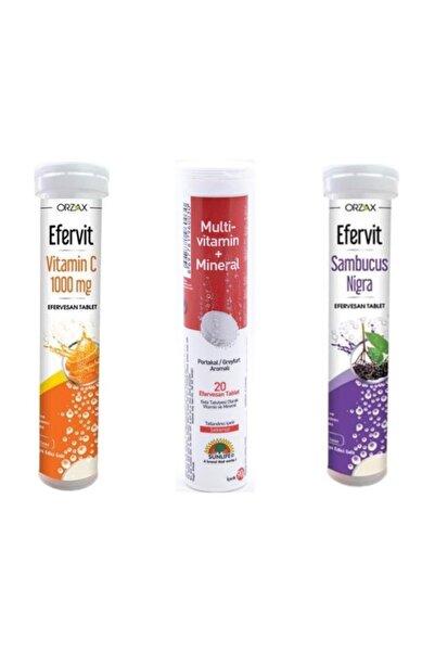 Sunlife Multi Vitamin Mineral + Efervit Vitamin C + Efervit Sambucus Nigra