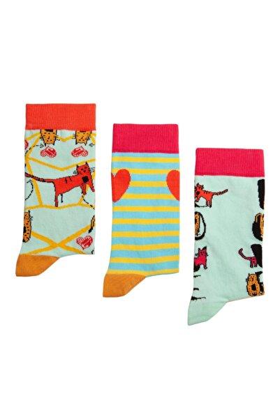 Biggdesign Kadın Renkli Cats Soket Çorap Seti