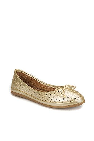 Polaris 81.155537MZ Altın Kadın Basic Comfort 100310147