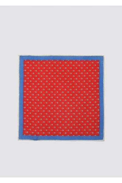 D'S Damat Erkek Kırmızı Mavi Desenli Mendil