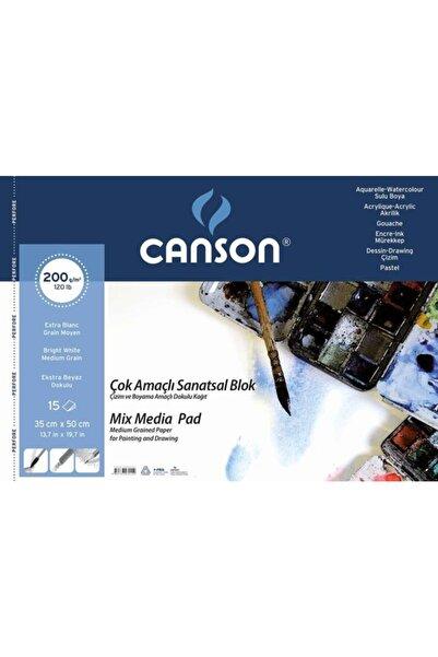 Canson 35x50 Cm 200 gram 15 Yaprak Dokulu Sanatsal Resim Defteri Spralli