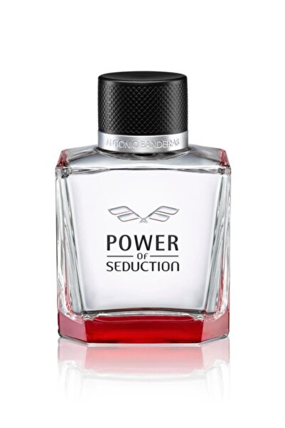 Antonio  Banderas Power Of Seduction Edt 100 ml Erkek Parfüm 8411061913024