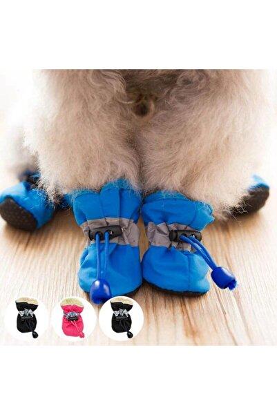Pet İmage Maker Içi Pamuklu Köpek Ayakkabısı