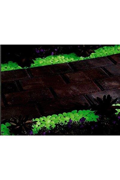 Biomak Çakıl Taşları Gece Parlayan Fosforlu Çakıl Taşları Bahçe Akvaryum Dekoratif 100 Adet Fosforlu Taş