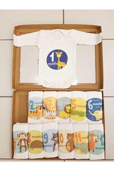 asyaland Unisex Bebek Body Her Ay Farklı Zıbın Setleri (12 Aylık Uzun Kollu) - En Güzel Anları Fotoğrafla