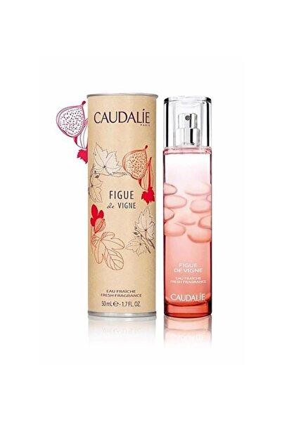 Caudalie Figue De Vigne Incir Aromalı Parfüm 50 ml