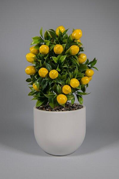 YAPAY ÇİÇEKÇİNİZ Beyaz Beton Saksıda Yapay Limon Ağacı