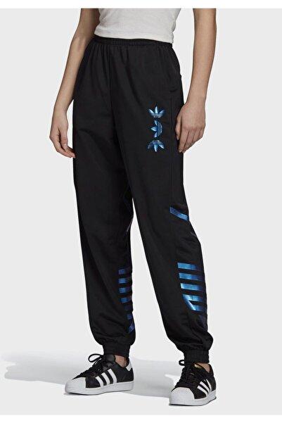 adidas Kadın Siyah Lrg Logo Tp Spor Pantolon