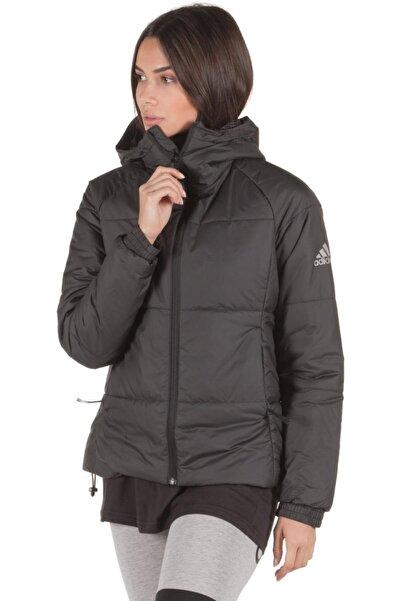 adidas Kadın Outdoor Mont W Bts Jacket Cy9127