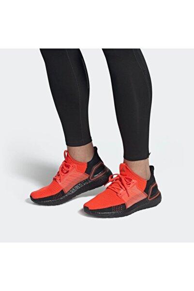 Erkek Ultraboost 19 M Koşu Ayakkabı