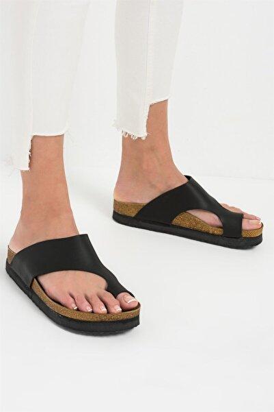 Fox Shoes Kadın Siyah Terlik
