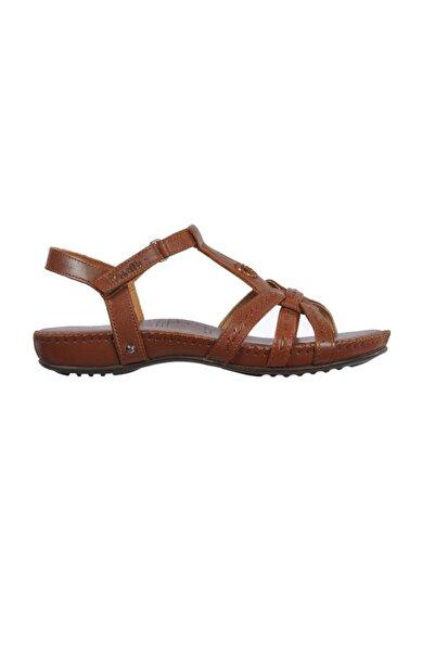 Forelli Kadın Kahverengi Sandalet