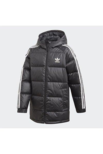 adidas Erkek Çocuk Siyah Mont Down Jacket