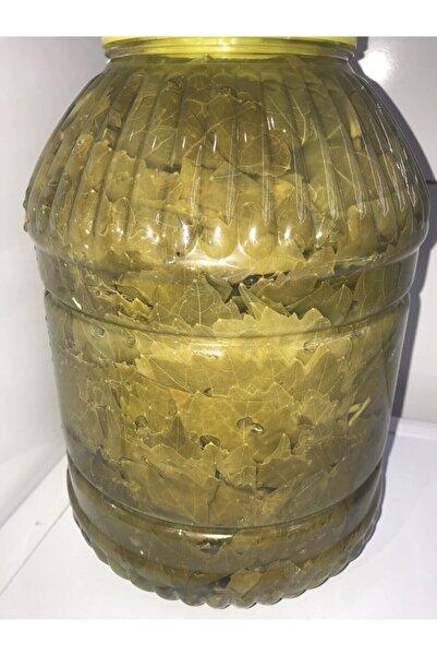 zeytin ve zeytinyağı dünyası 5 Kg Ambalajda Salamura Yaprak. Sarma Yaprağı. Asma Yaprağı. Bağlarımızda Ilaç Kullanılmamıştır.