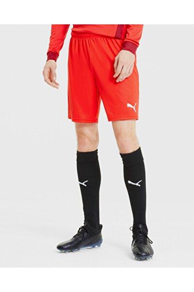 Puma Shorts Teamgoal 23 Knit Shorts 70426201