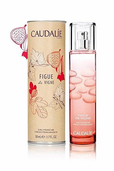 Caudalie İncir Aromalı Parfüm Edp 50 ml 3522930000969