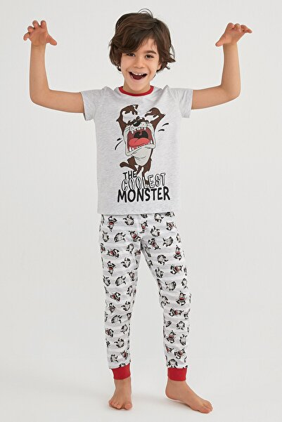 Penti Erkek Çocuk Gri  Lıc Famıly Tasmanıan Pijama Takımı 2li