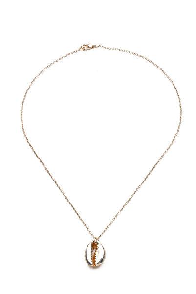 Modex Kadın Altın Sarısı Deniz Kabuğu Kolye UK9270