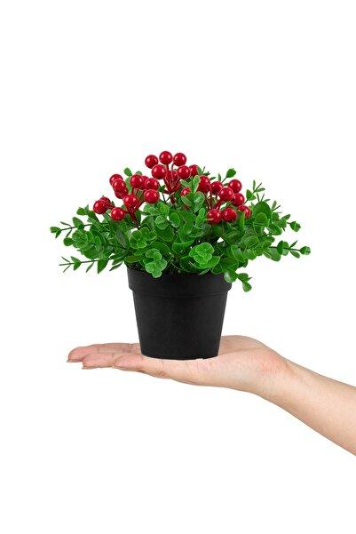 Çiçekmisin Siyah Mini Plastik Saksıda Yapay Kokina Çiçeği