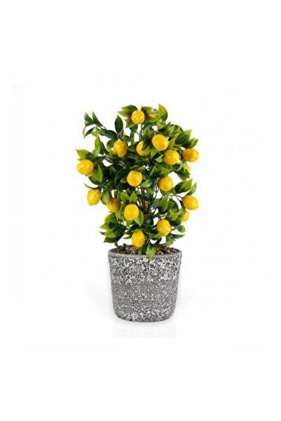 KANKAR Porselen Saksıda Yapay Limon Ağacı 1 Adet